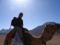 Kamelreiter in der Arabischen Wüste