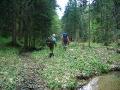Slowenien - Weggefährten im Flachen