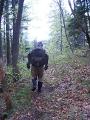 Slowenien - Ein Weggefährte geht seinen Weg